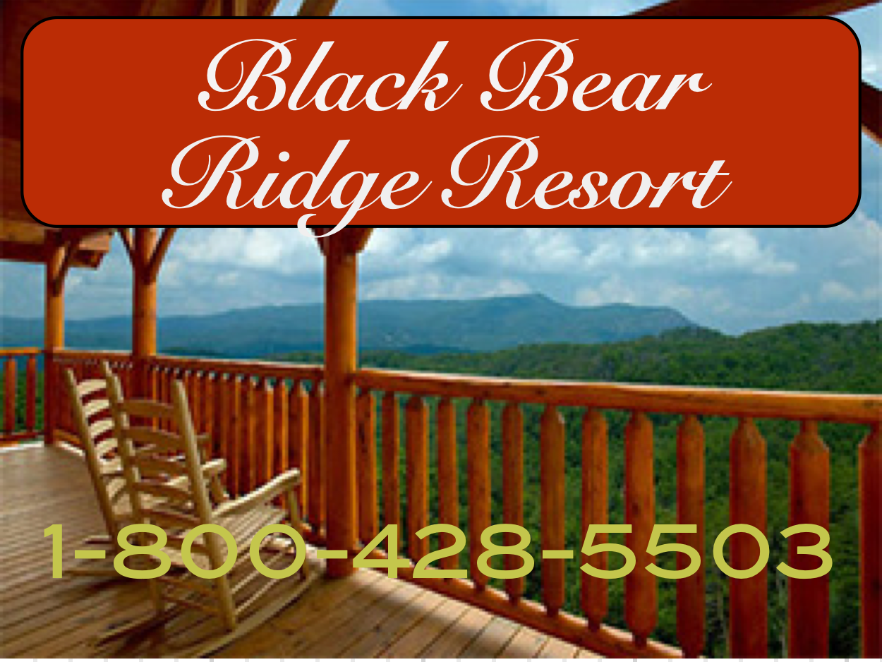 black bear ridge cabins